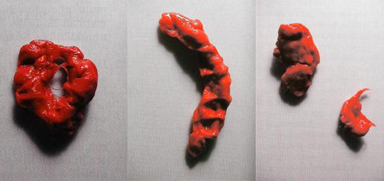 """Gambar dari majalah """"Stimmkoerper"""". Hasil karya seni yang memvisualkan organ suara manusia yang dibuat dari permen karet yang diberi warna. Sumber: http://www.salon-verlag.de/index.htm?stahmer.htm"""
