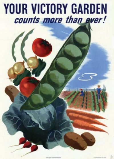 Poster Your Victory Garden Counts More than Ever!, Hubert Morley.